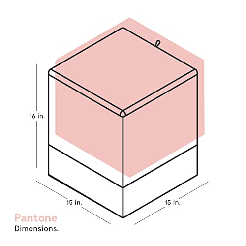 Outstanding Buy Kvell X Pantone Storage Ottoman Bashful Pink With Ubuy Forskolin Free Trial Chair Design Images Forskolin Free Trialorg