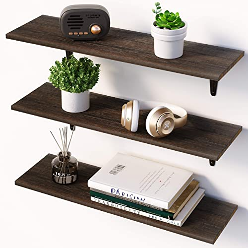WOOD CITY Floating Shelves Shelves for Wall Display Book Plant and More Bedroom Living Room Kitchen Wall Shelves Wall Mounted Set of 2 Wood Rustic Floating Shelves for Wall for Bathroom